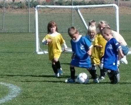 soccer herd
