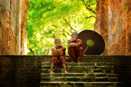 Young-Buddhist-reading