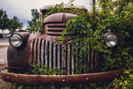 overgrown-truck